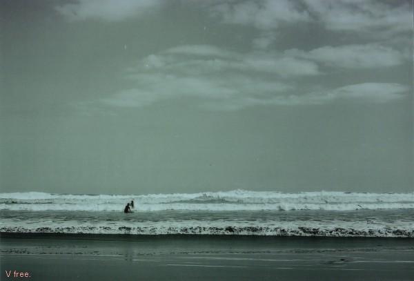波に乗りたい