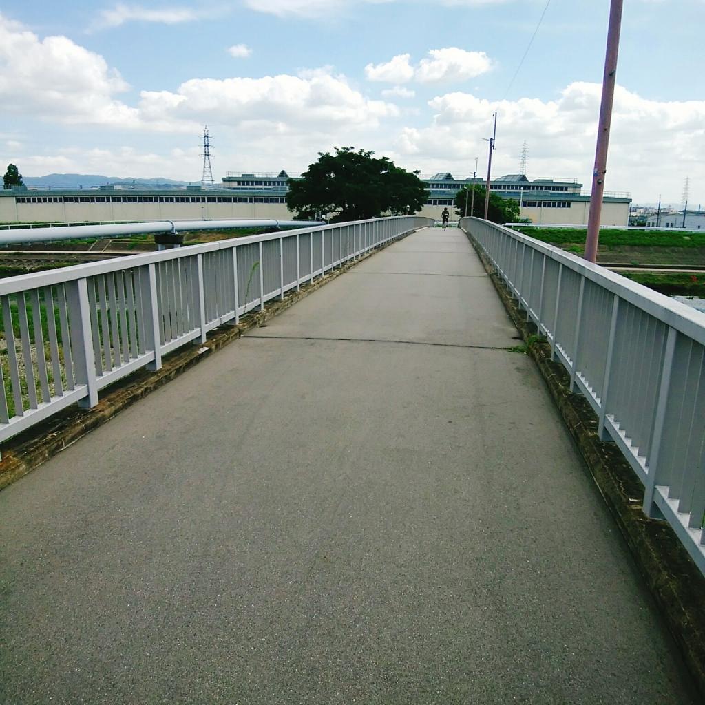 京都 観光 鴨川