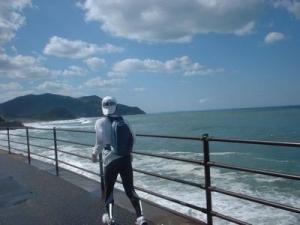 糸島lsd