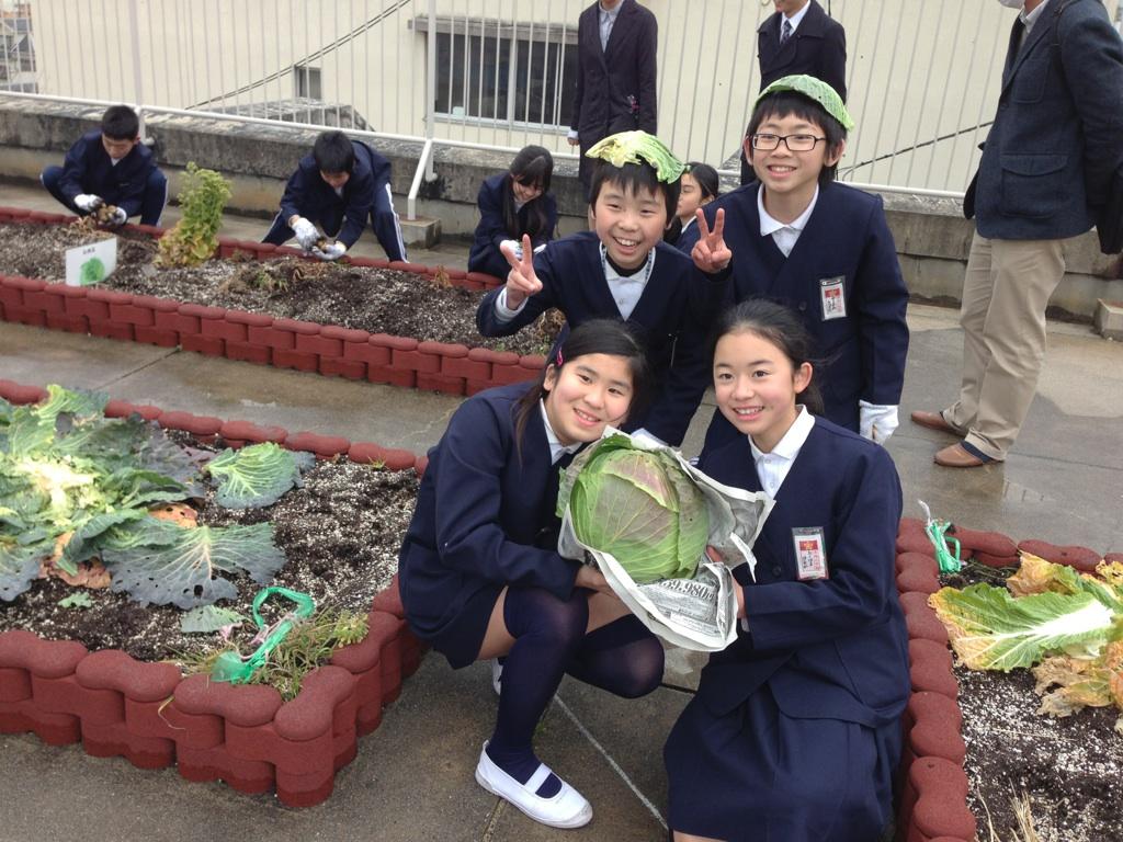 大阪初!小学校で新たな食農体験...