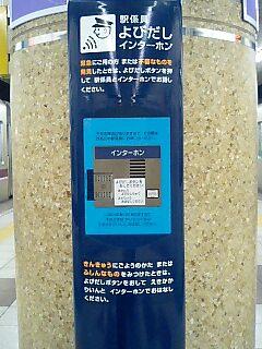 20061130_306212.jpg