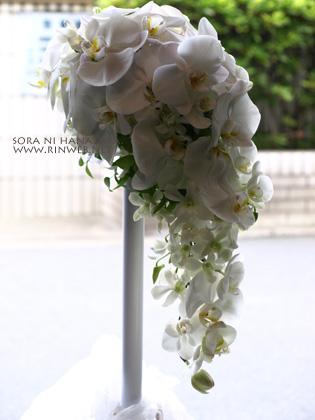 胡蝶蘭のブーケ(右横から見てみたブーケ)@花屋 空に花束