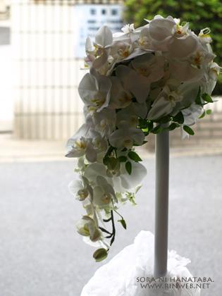 胡蝶蘭のブーケ(左横から見てみたの図)@花屋 空に花束