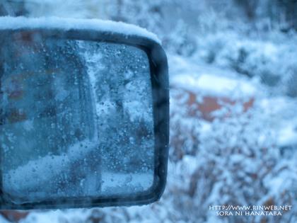 降り始めの雪のコロ。