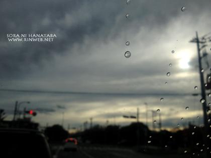 いっぱいの雨の後、晴れた空へ。