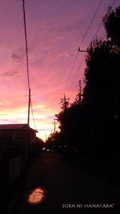 9月16日、夕焼け。