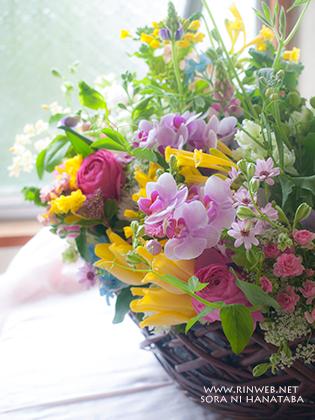 お元気ですか?ありがとうの花を@我孫子市へお届け