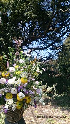 大学院へお届けの卒業の花を@柏市内へお届け