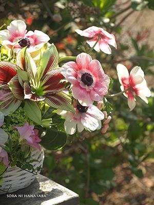 柏市内Barの6周年記念お祝い花をお届け