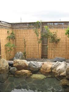 琵琶湖ロイヤルホテル温泉