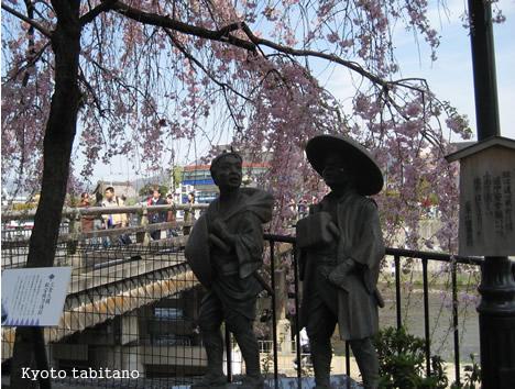 三条大橋の桜
