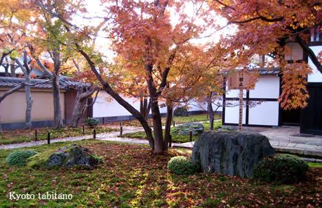 黄梅院の紅葉