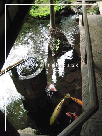 美しき四君子苑【京都旅楽】