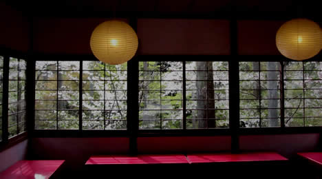 三千院 奥の院 桜