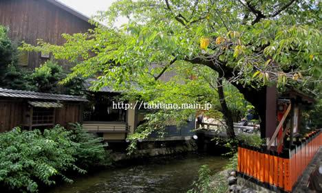 祇園白川 紅葉
