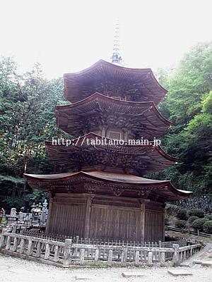 安楽寺 三重の塔