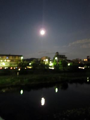 京都 ハニームーン