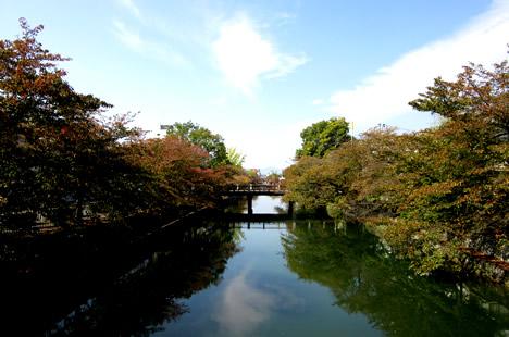 岡崎疏水 紅葉