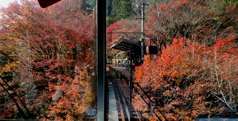 叡山電車 紅葉
