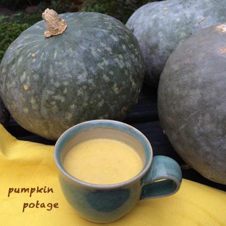 カボチャポタージュ pumpkin potage