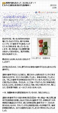 L25_spice.jpg