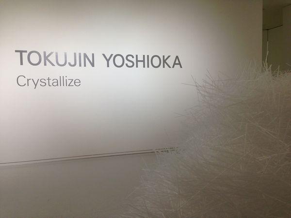 TokujinYoshioka_Crystallize3.jpg