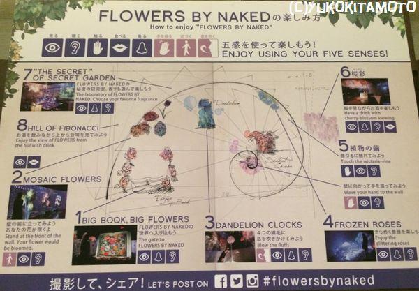 FLOWERSbyNAKED4.jpg