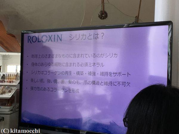 ROLOXIN_lift12.jpg