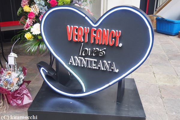veryfancy_annteana3.jpg