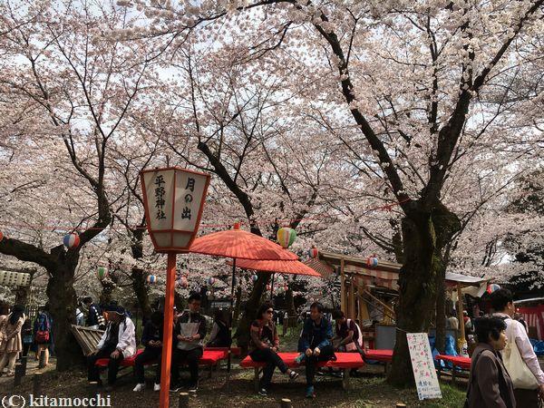 平野神社hiranoshrine8.jpg