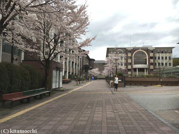 立命館大学RitsumeikanUniversity5.jpg