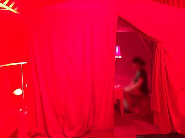 shiseido_rougerouge_15.jpg