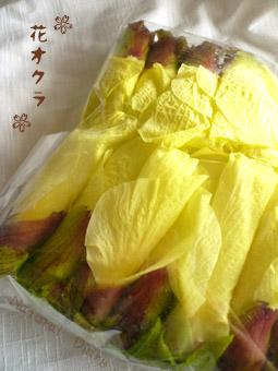 花おくら 花オクラ トロロアオイ エディブルフラワー 腎良花