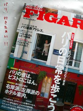 madame FIGARO japon (フィガロ ジャポン)  パリ 特集