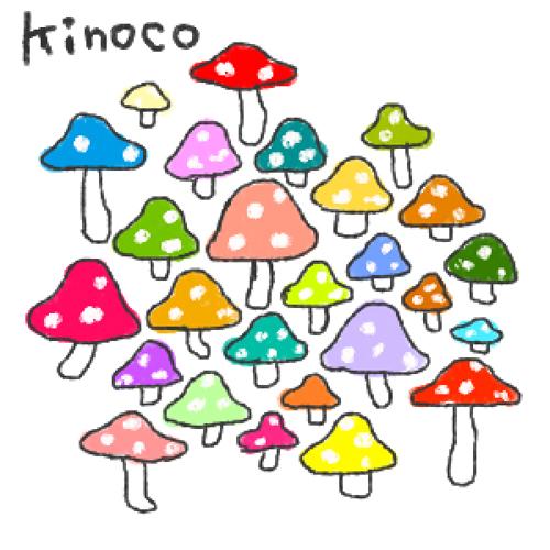 kinoco20101029.jpg