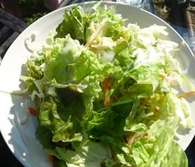 【ソラノネ】高島で獲れた野菜のサラダ