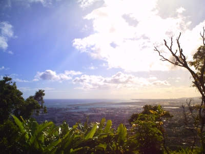 ハワイ トイデジ vivicam hawaii