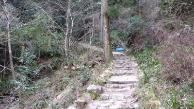 施福寺 坂