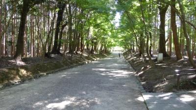 醍醐寺 境内通路