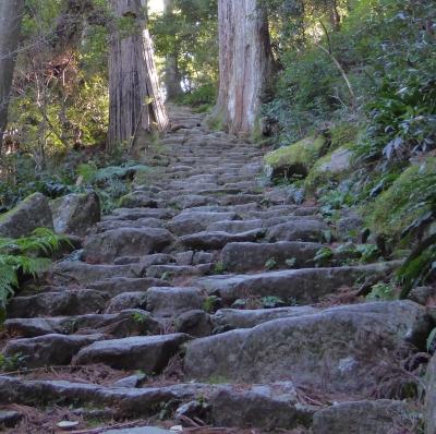 青岸渡寺 滝への階段(振返り