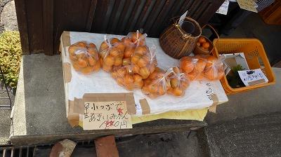 2010湯浅・みかん