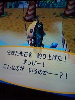 090705_16022011.jpg