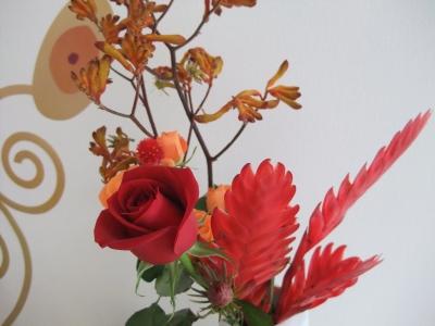 beggers flowers