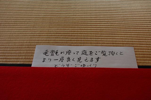 DSC_0023.jpg