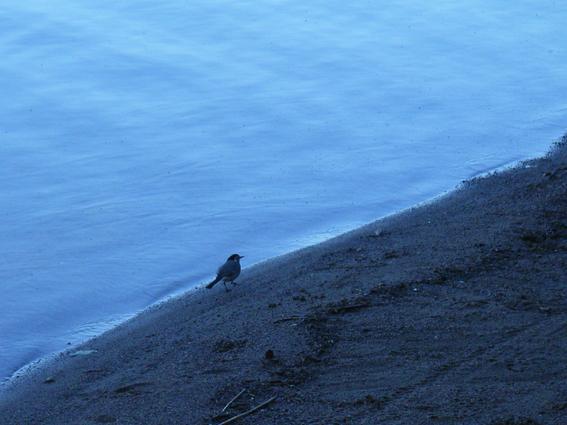 イマトラ湖3.jpg