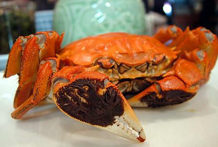江南飯店 上海蟹