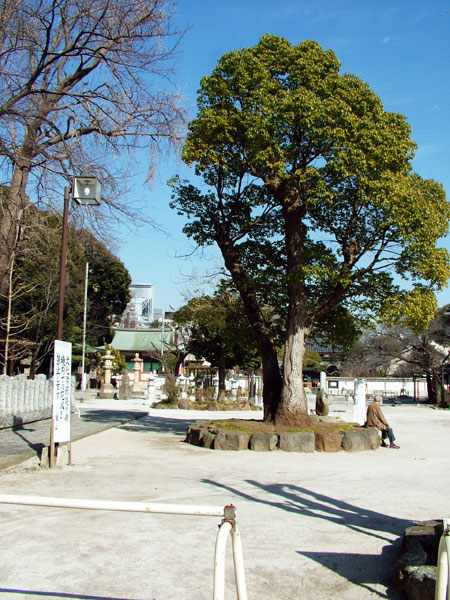 東京都目黒区下目黒 龍泉寺
