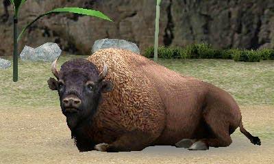 アニマルリゾート 動物園をつく...