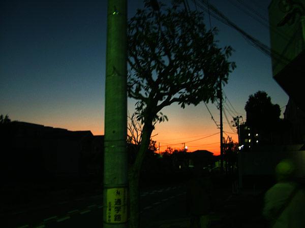 DSCF1807.jpg