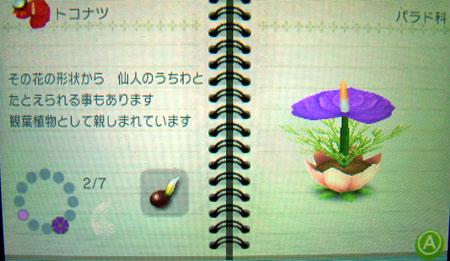 DSCF0182.jpg